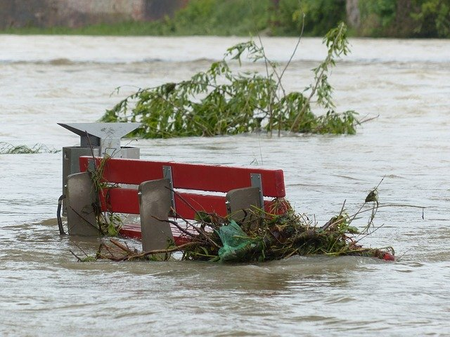 Park bench and branches in a flood